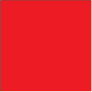 www.boyzbieber.com